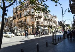 שנהב ברחוב יונה